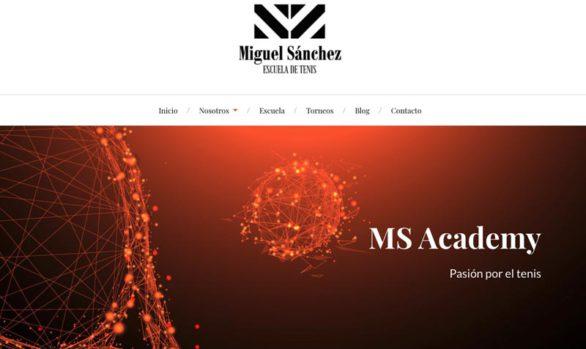 MS Academy